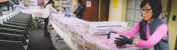 Elections staff sorting vote-by-mail ballots at the processing center